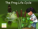 From Water to Land: The Life Cycle of a Frog: Presentation