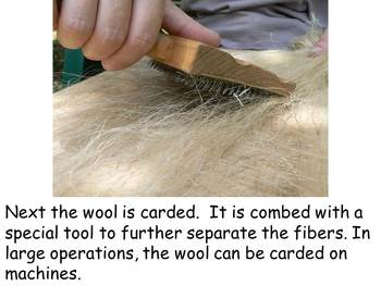 "From Wool to Yarn Nonfiction PowerPoint ""Book"" for First or Second Grade"