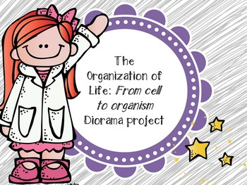 From the Cell to the Organism - Diorama Project