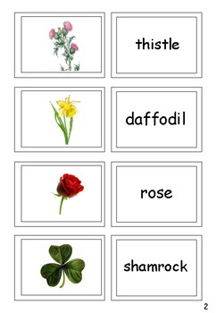 FREE Flowers and Leaves Picture and Word Matching Cards