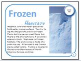 Frozen Arctic and Tundra Habitats Plant and Animal Adaptations PDF Presentation