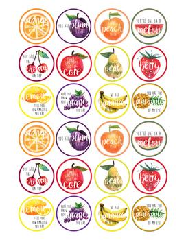 Fruit Circle Tags