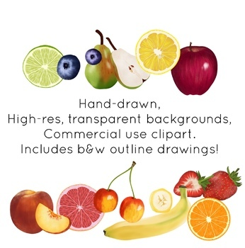 Fruit -Common Fruits - Realistic Clip Art