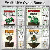 Fruit Life Cycle Bundle