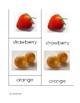 Fruit Nomenclature Cards in Print