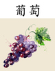 Fruit Posters - Chinese