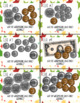 Fruit Riddles through Counting Coins