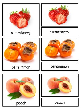 Fruit and Berries Montessori 3-part cards