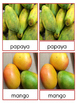 Fruit and Vegetable 3-Part Cards from the Caribbean & Lati