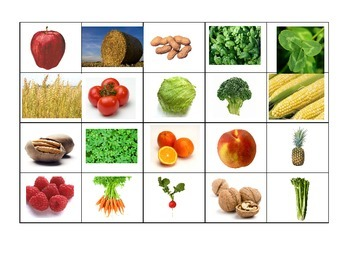 Fruit and Vegetables Sorting Game