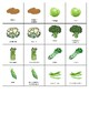 Fruit and vegetable matching-memory game