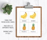 Fruits | Three Part Cards | Montessori Cards