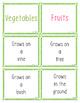 Fruits & Vegetables Sorting Cards