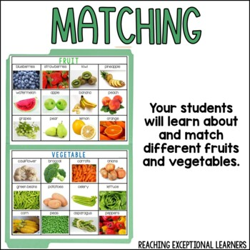 Fruit or Vegetable- File Folder Activity- Special Education
