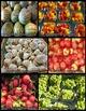 Fruits and Vegetables Photos (BUNDLE)