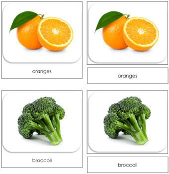 Fruits and Vegetables Safari Toob Cards - Montessori