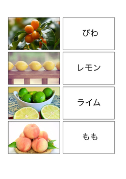 Fruits in Japan Vocabulary Cards