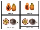 Fruits of the Diaspora - Nomenclature Cards - African American