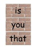 Fry's 1st 100 brick style word wall