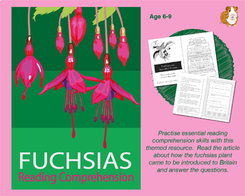 Fuchsias Are Beautiful: Let's Practise Our Reading Comprehension (6-9 years)