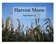 Full Moon Mini-Posters