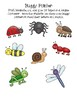 Full of Bugs  Letter and Sounds Recognition Assessment