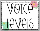 Voice Levels for Classroom Management {Cactus Themed}