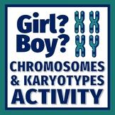 DNA and Chromosomes Activity Build a Boy or Girl Karyotype