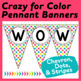 """Editable Pennants in """"Crazy for Color"""" Chevron, Stripes, and Dots"""