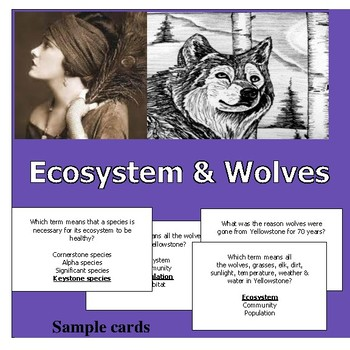 Fun & Educational Ecosystem & Wolves board game & questions