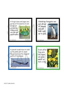 Fun Fact Cards SCIENCE BUNDLE