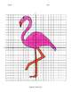 Fun Fact Coordinate Graphing Picture: Flamingo