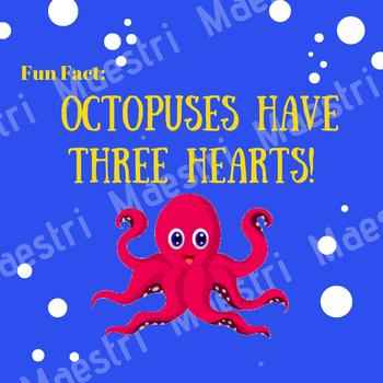 Fun Fact Octopus