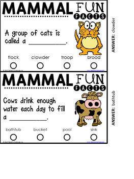 Fun Facts BUNDLE {Self-Checking Task Cards}