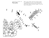 Fun Facts Dot-To-Dot With Pollination Facts Bee, Bat, Butt