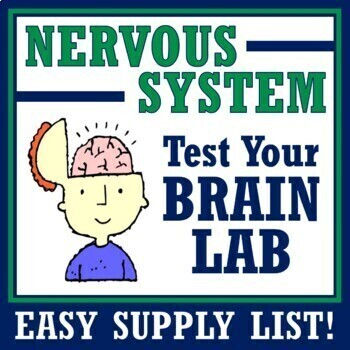 Fun Nervous System Activity - TEST YOUR BRAIN NGSS MS-LS1-3 MS-LS1-8