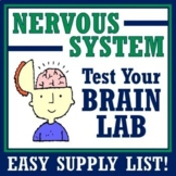 Human Body Systems: Nervous System Brain Test Activity NGSS MS-LS1-3 MS-LS1-8