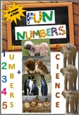 Fun Numbers - 1 through 5