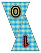 Fun Plaid Pennant Banner Set - Write any Message - all letters & Numbers
