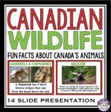CANADIAN ANIMALS PRESENTATION