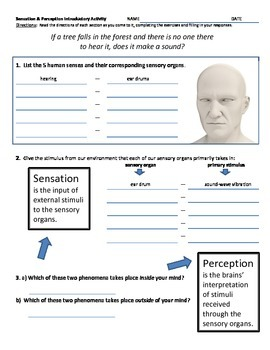 Psychology - Fun Activity for Perception - If a tree falls