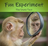 Fun Science Experiment - The Stare Test