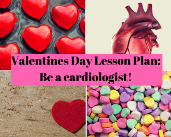 Fun Valentine's Day Lesson - Be a Cardiologist!