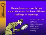 Fun With Homophones PowerPoint
