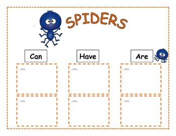 Fun With Spider Facts