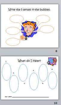 Fun With the 5 Senses