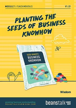 Fun-damentals - Planting the Seeds of Business KnowHow Wisdom Pack