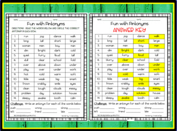 Fun with Antonyms Worksheet Activity