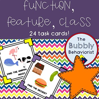 Function, Feature, Class Task Cards