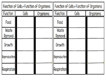 Function of Cell vs. Function of Organism